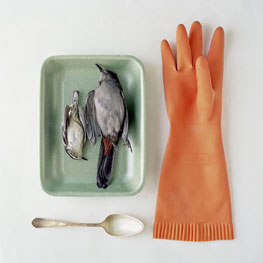 Kimberly  Witham- Orange Glove